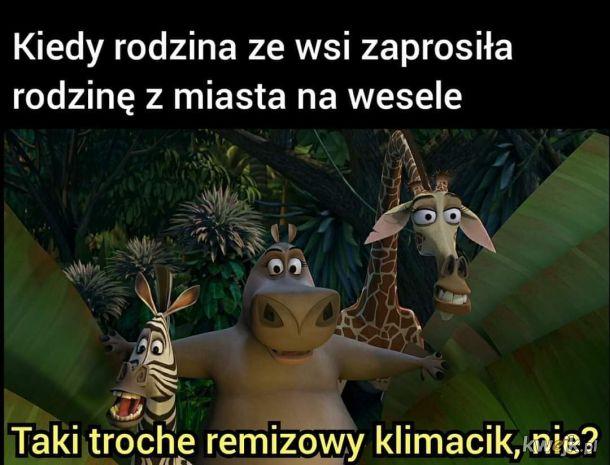 Remiza