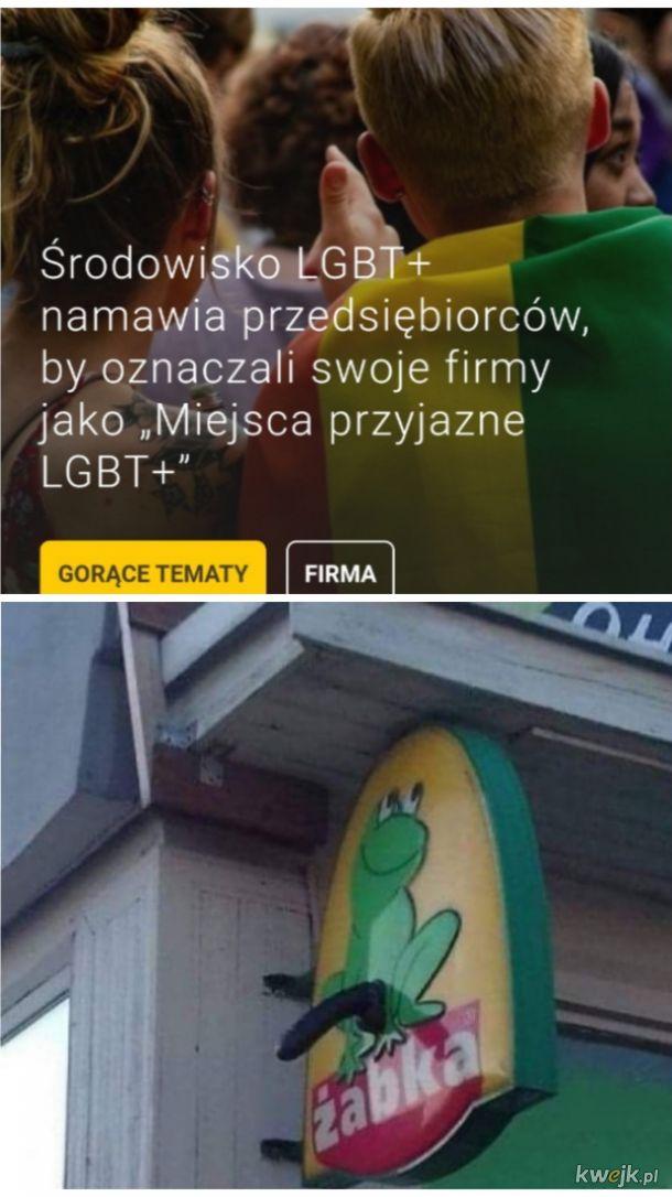 Środowisko LGBT+