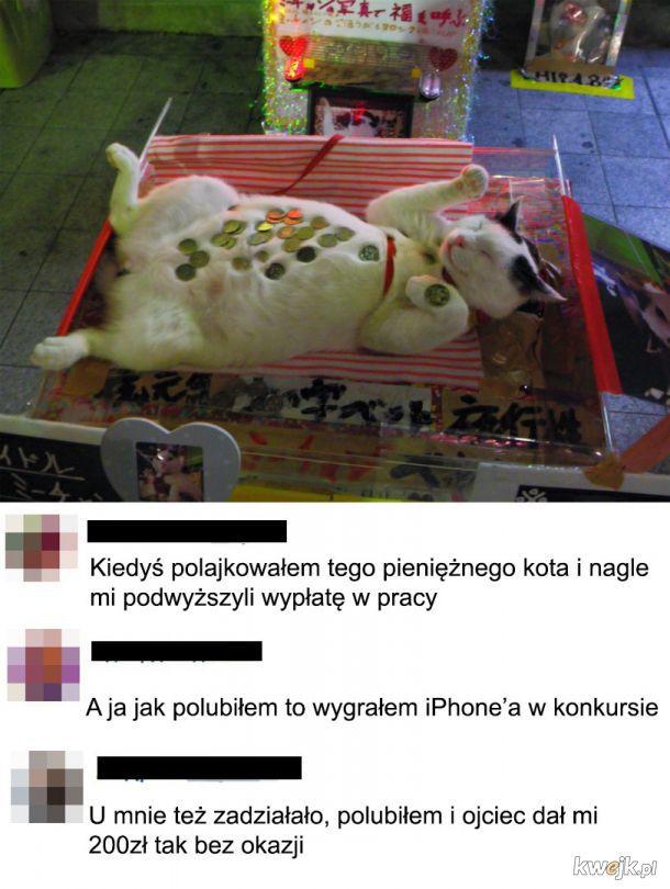 Pieniężny kot