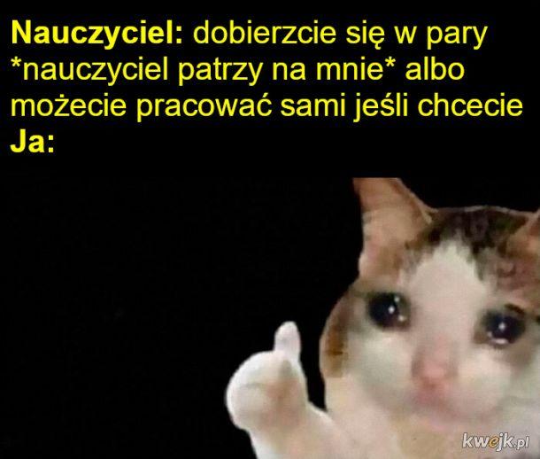 Memy o introwertykach, obrazek 6
