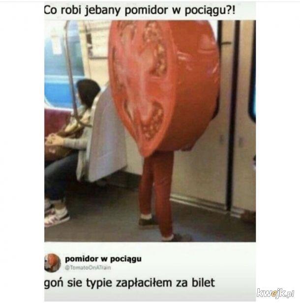 Co ten pomidor