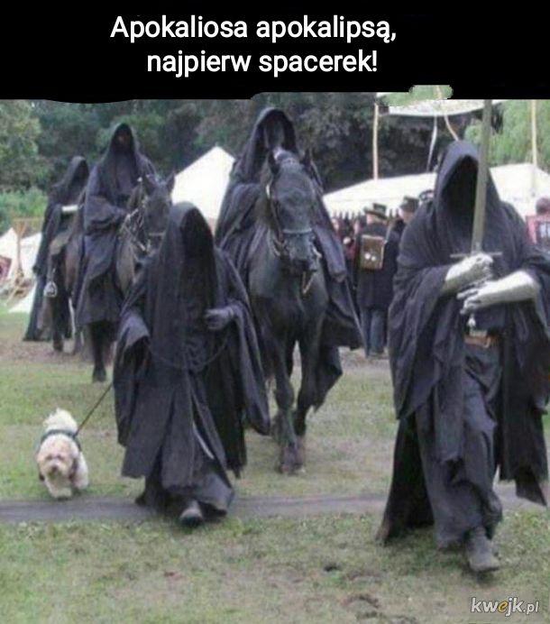 czterech jeźdzców apokalipsy i pies