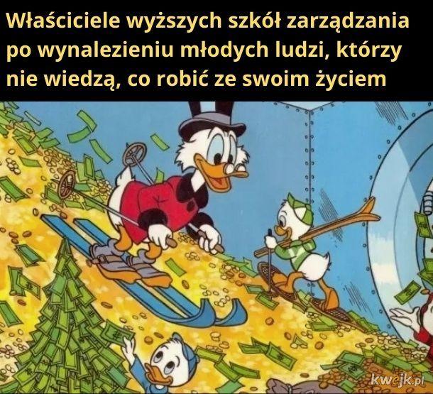 Bogactwo!