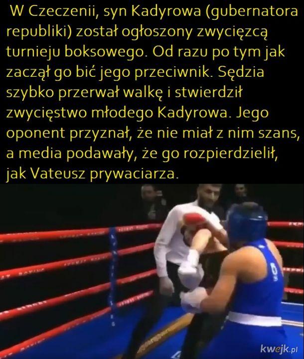 Zawody bokserskie po czeczeńsku tfe