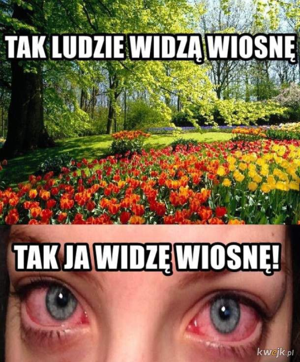 Wiosna, ach Wiosna