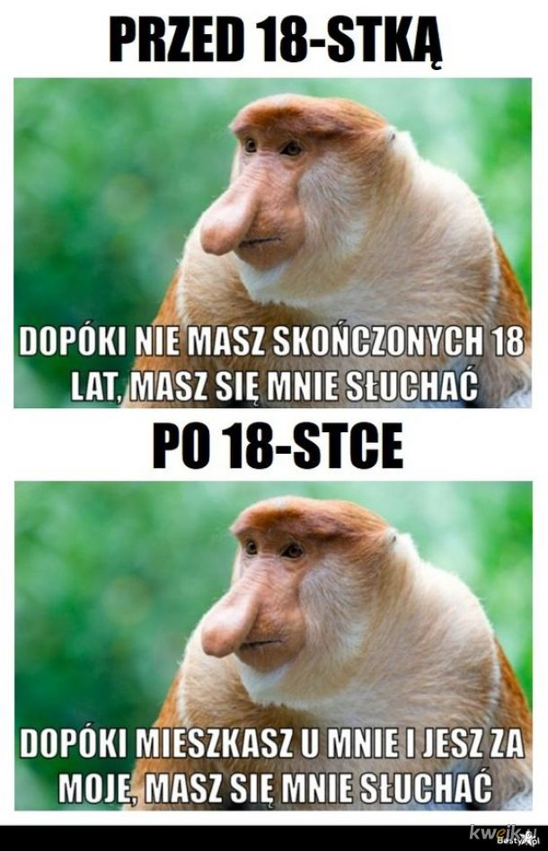 18-stka