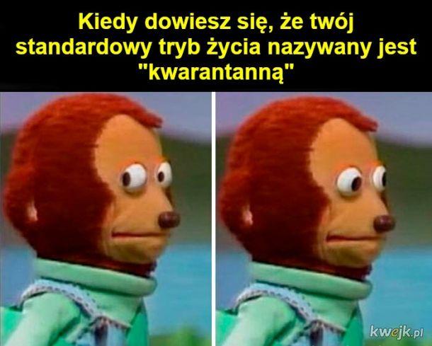 Memy o introwertykach, obrazek 5