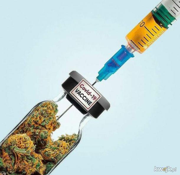 Skuteczna szczepionka
