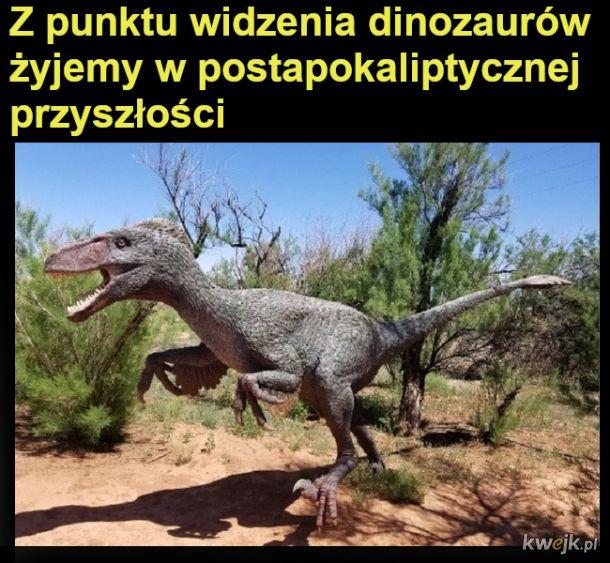 Z punktu widzenia dinozaurów...