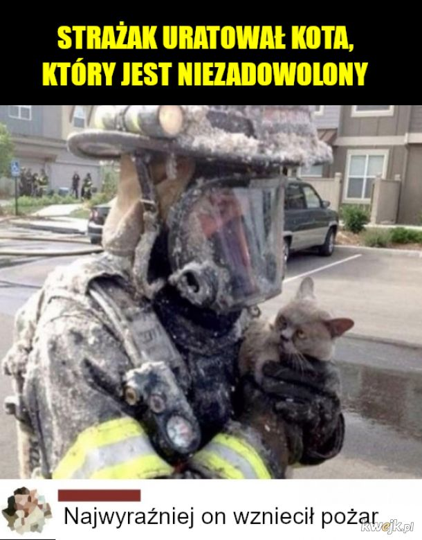 Kot z pożaru