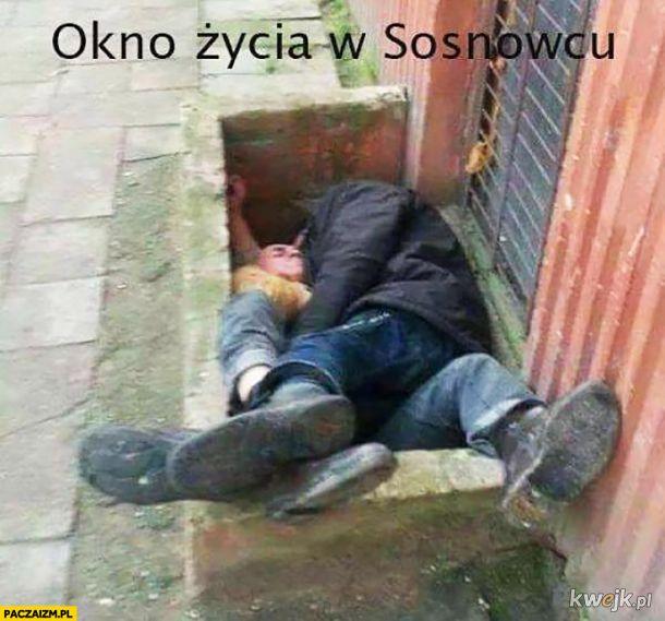 Okno życia w Sosnowcu