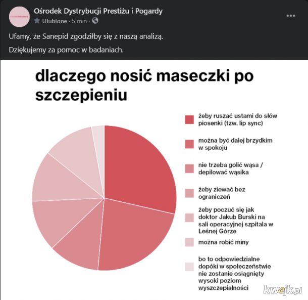 Jak wynikło z sondażu