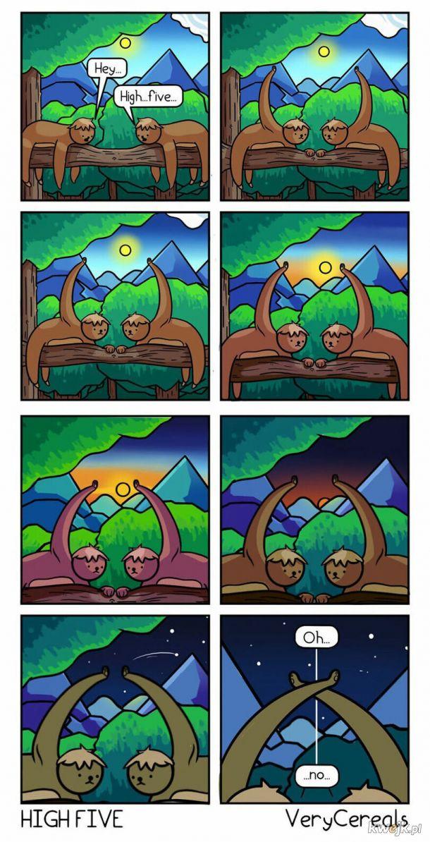 Leniwce zbijają piąteczkę