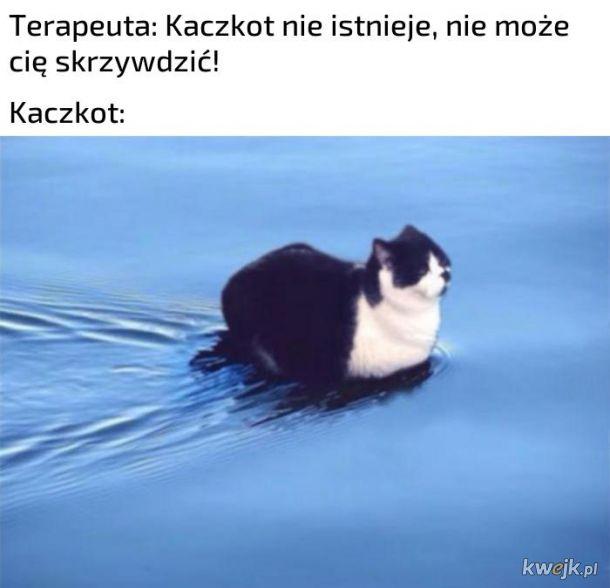 Kaczkot