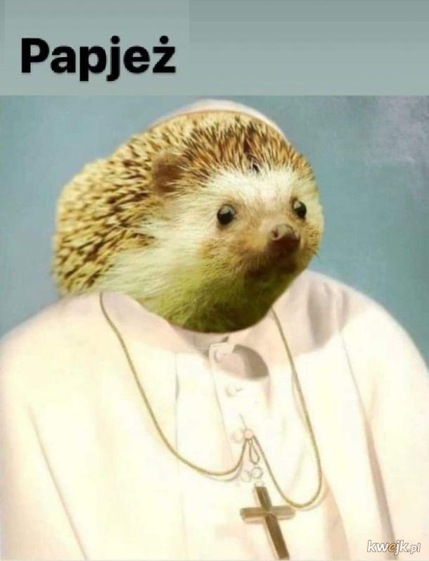 Pan Jeżuś