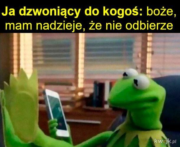 Memy o introwertykach, obrazek 4