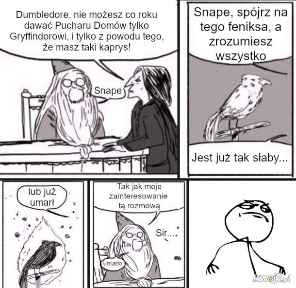 Dumbledore na wykebaniu