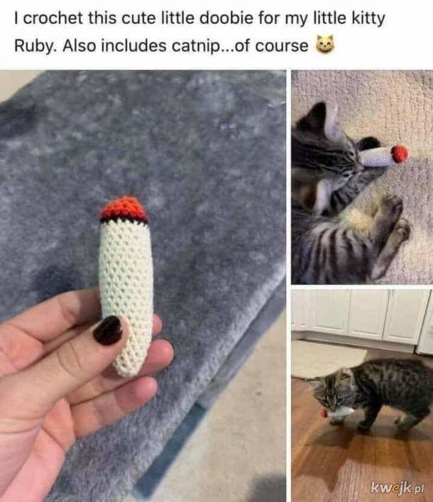Joint dla koteła.