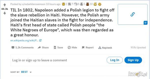 Polacy Murzynami Europy