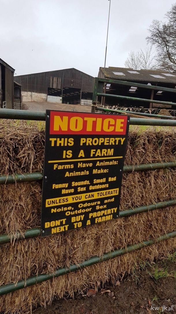 Kupujesz nieruchomość przy farmie?