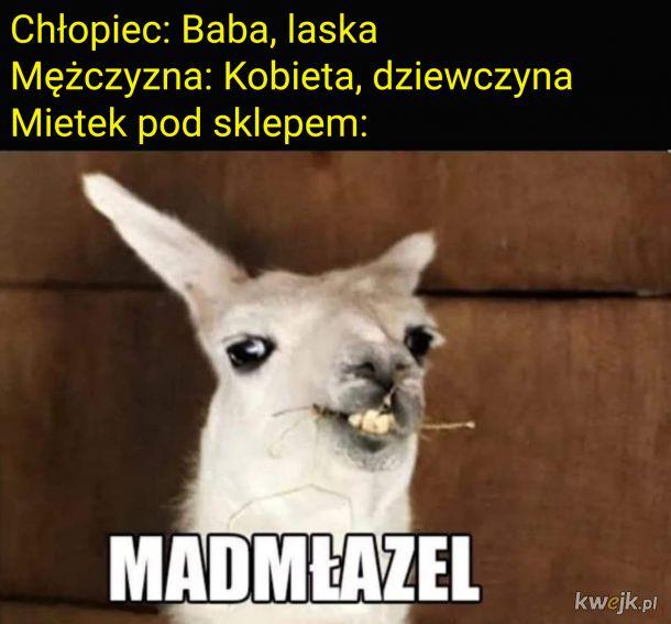 Szarmancki mietek