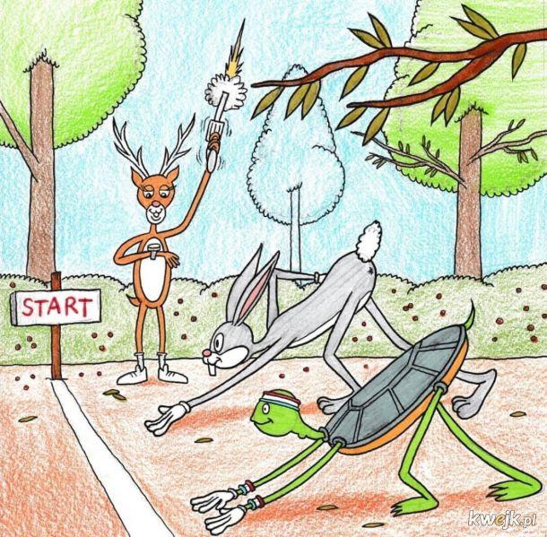 Prawdziwa historia wyścigu Żółwia i Zająca