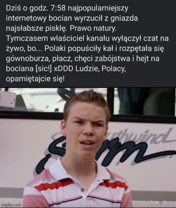 Polska mocno