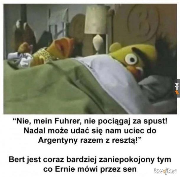 Bert sypia z bohaterem