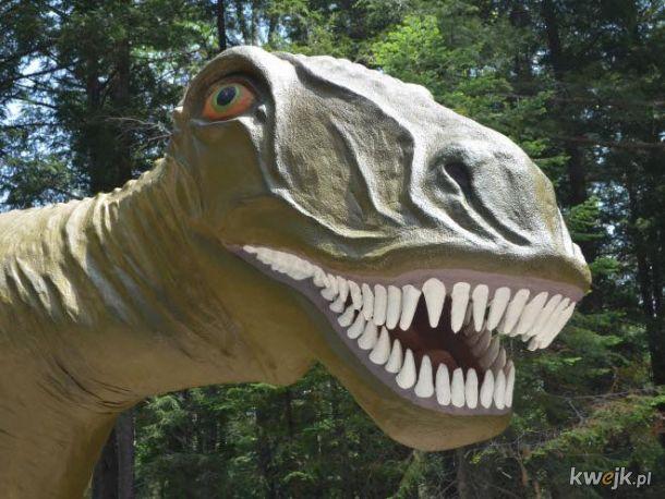 Jurassic Park na kwasie, czyli wyprawa do Parku Dinozaurów to świetna rozrywka dla całej rodziny!, obrazek 3