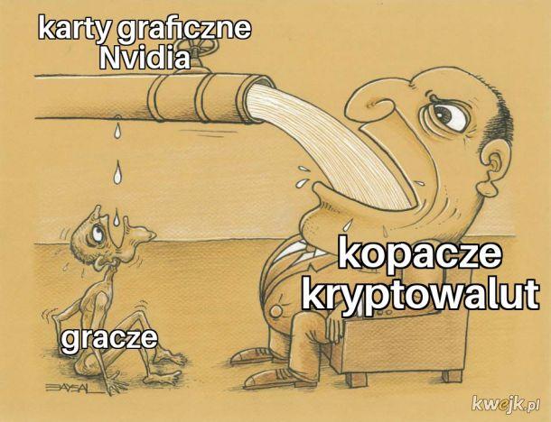 Gardzę kryptogórnikami