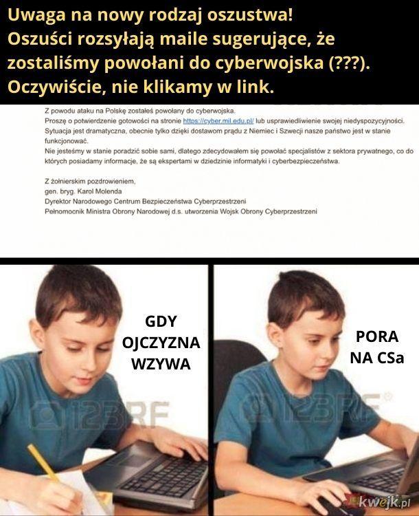 Cyberwojsko