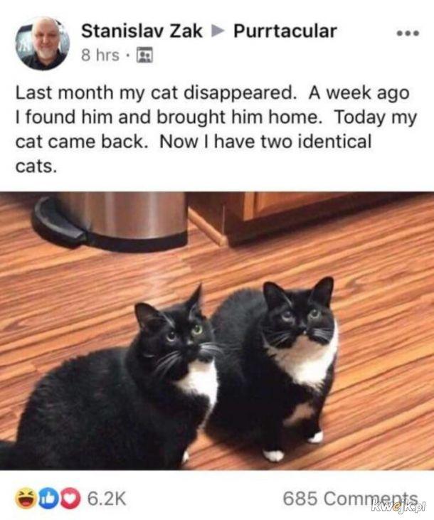 Zmówili się.