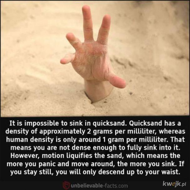 Ruchome piaski pochłaniają tylko panikarzy.