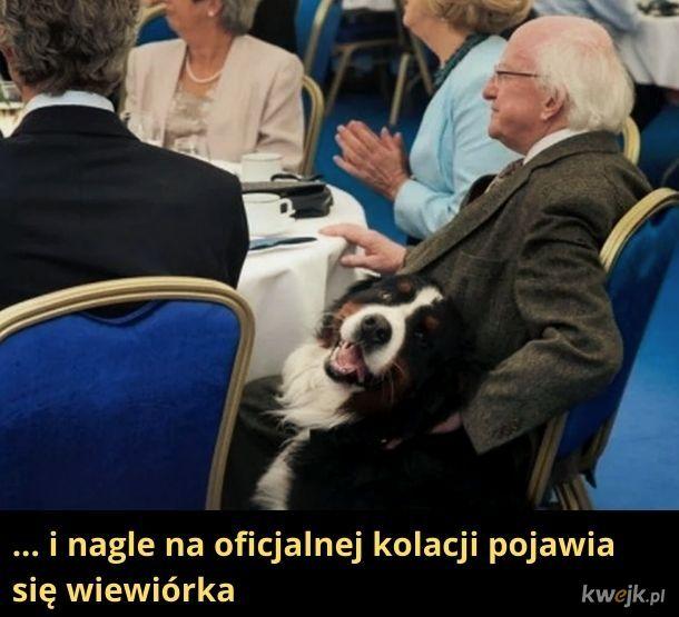A ten pan to prezydent Irlandii