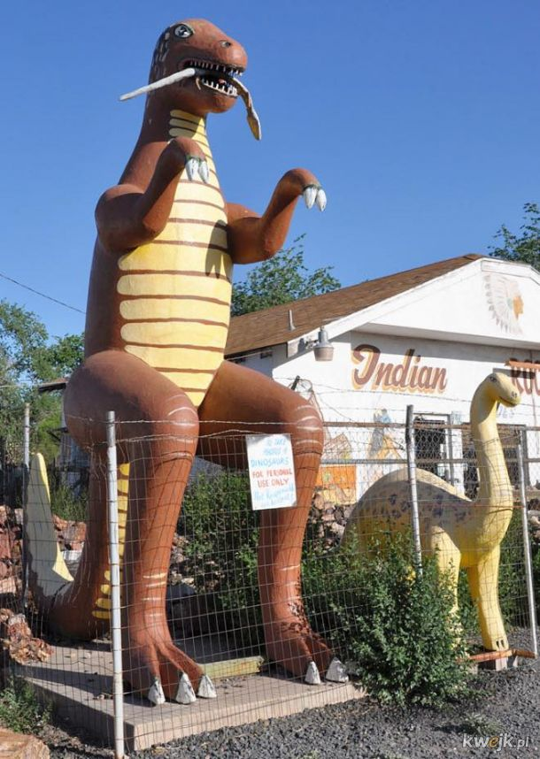 Jurassic Park na kwasie, czyli wyprawa do Parku Dinozaurów to świetna rozrywka dla całej rodziny!, obrazek 4