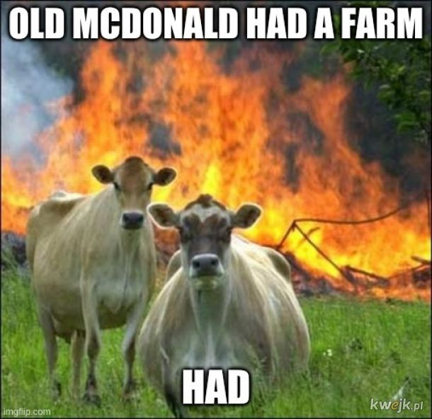 Teraz robi sobie grill party