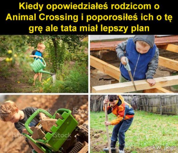 Plan taty