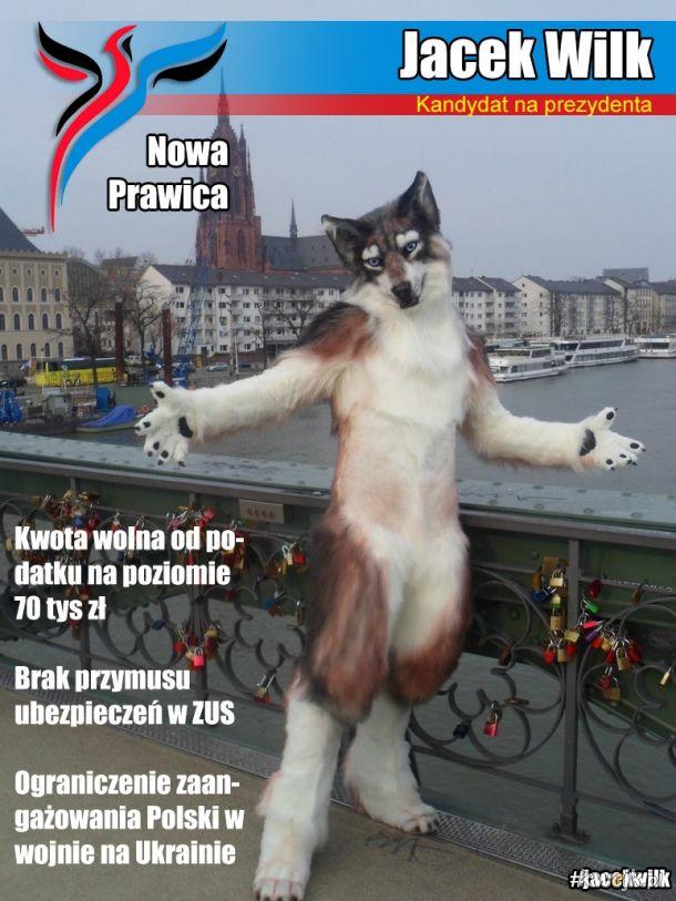 Na takiego wilka na to 100% zagłosuję