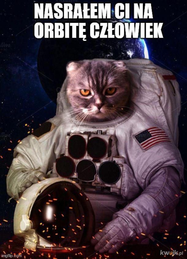 kiedy wywaliłeś kota z kuchni w kosmos