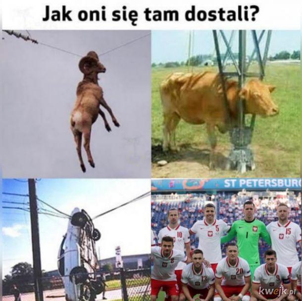 Polska górą?