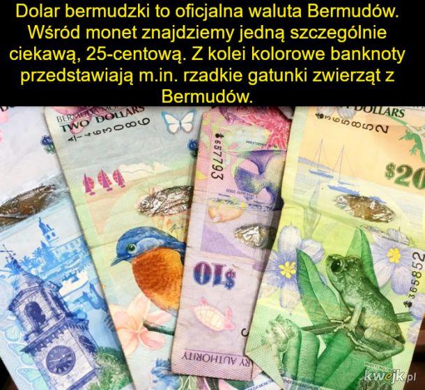 Pieniądze świata - tak piękne, że aż szkoda je wydawać