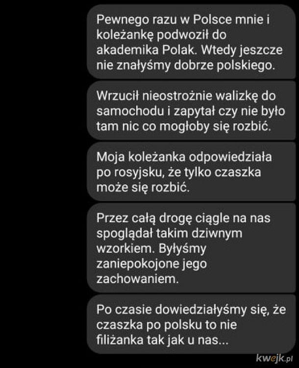 Czaszka = filiżanka