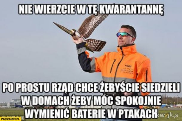 ptaki + spisek