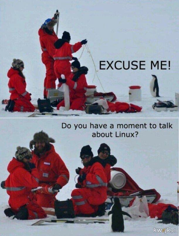 Natrętni ci Ubuntowi...