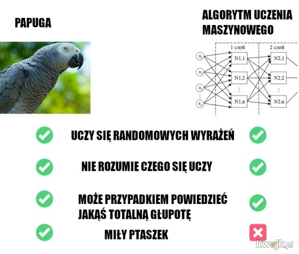 Inteligencja na poziomie