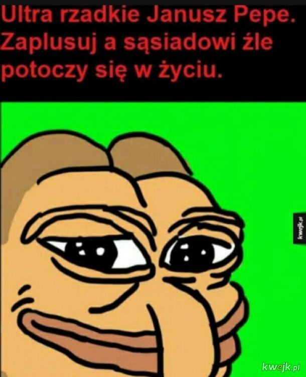 Janusz pepe