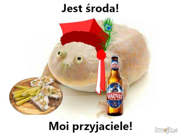 Środowa żaba na dzień dobry