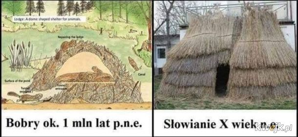 Bobry > Słowianie
