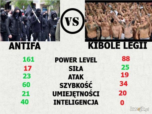 Antifa vs Kibole porównanie sił