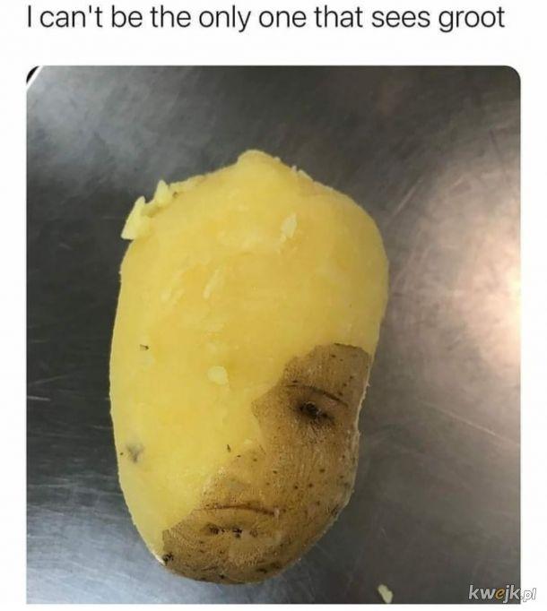 Groot Ziemniak